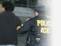 Deportation Defense Attorney Southfield MI